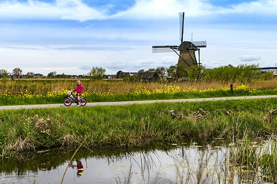 荷兰闻名世界的风车村(资料图).jpg
